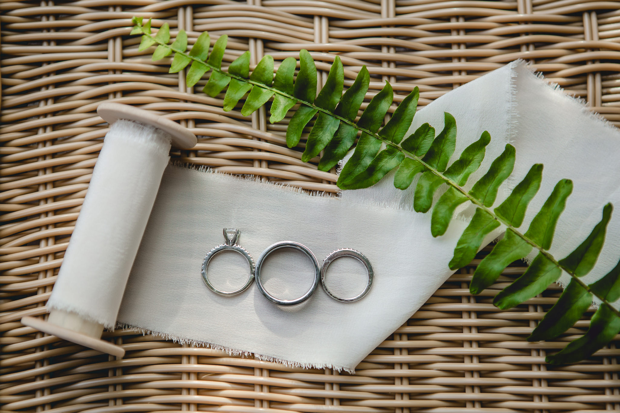 Wedding bands and engagement ring on a spool of ribbon with a green fern
