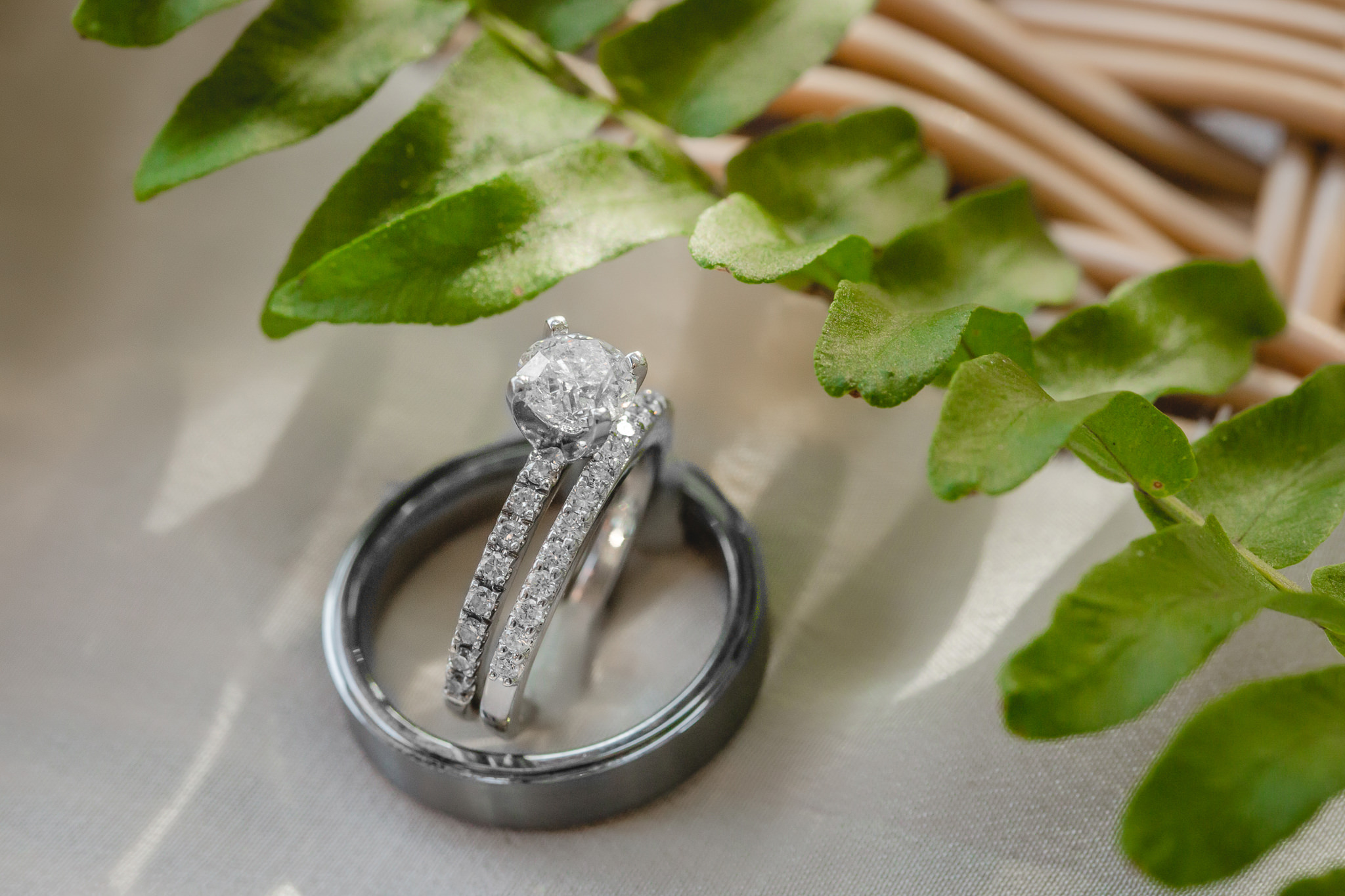 Closeup of wedding rings at Greystone Fields
